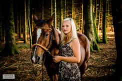 Pferdefotos (3)